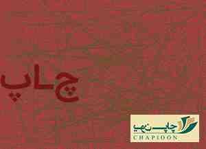 جعبه پیتزا شیراز
