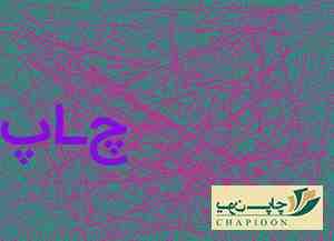 جعبه گل شیراز