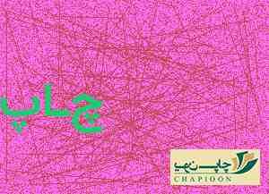پاکت عید غدیر