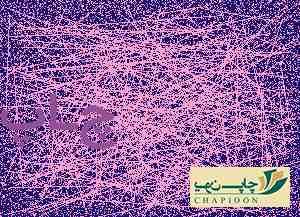 چاپ سررسید مشهد